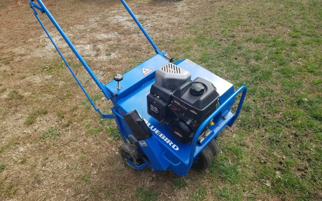 Lawn Aeration how much does it cost?