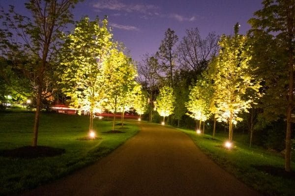 Driveway lined with lighting.