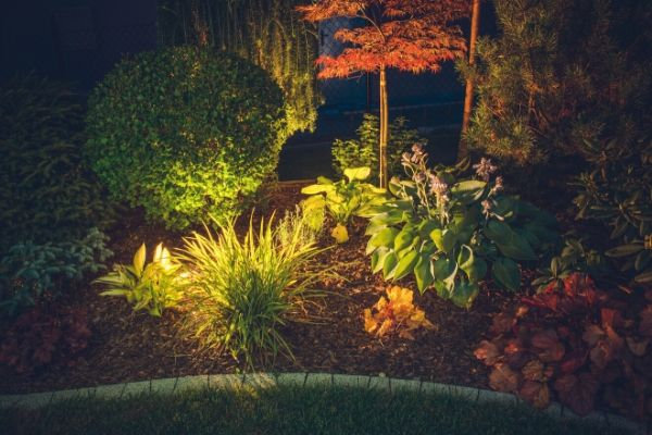 Landscape bed with lights to accent the plants.