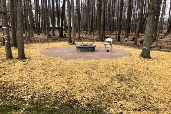 Fire pit in the woods surrounded by straw.
