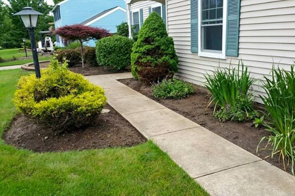 Sidewalk in a side yard surrounded by landscaping beds.