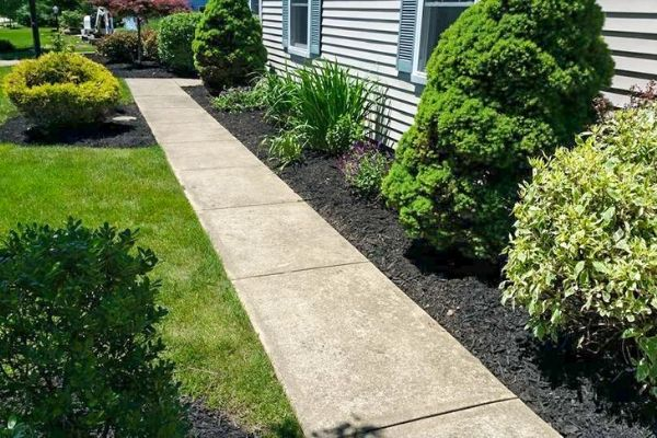 Sidewalk in a side yard surrounded by landscaping beds with fresh black mulch.