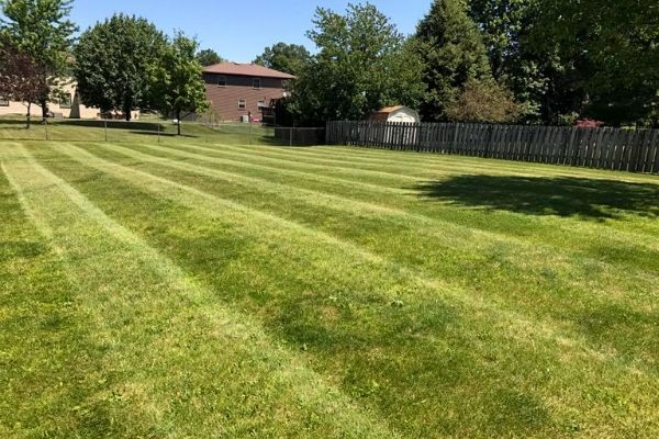 LAWN MOWING SERVICES REASON TO USE PRO'S